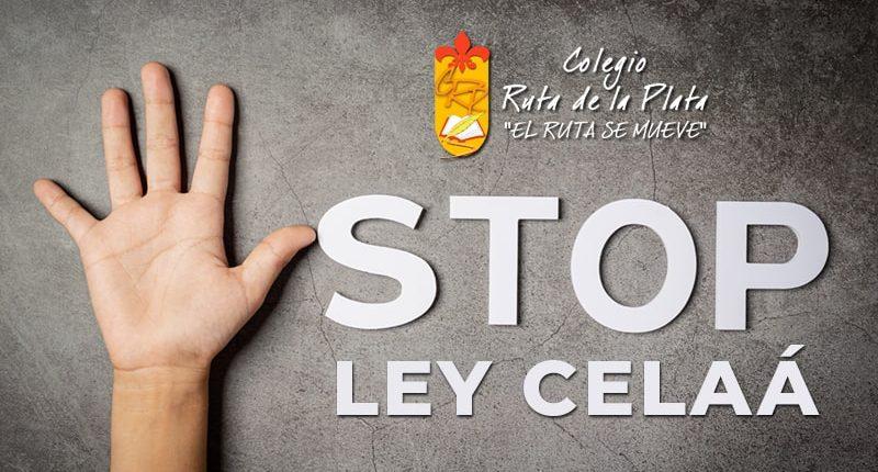 Manifiesto Afa Colegio Ruta de la Plata sobre la Ley Celaá